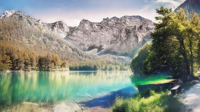 landscape photo of calm body water between trees and mountain